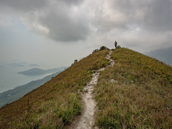 Path to the Top