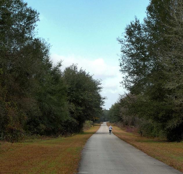 WTSP Trail HDR Image1