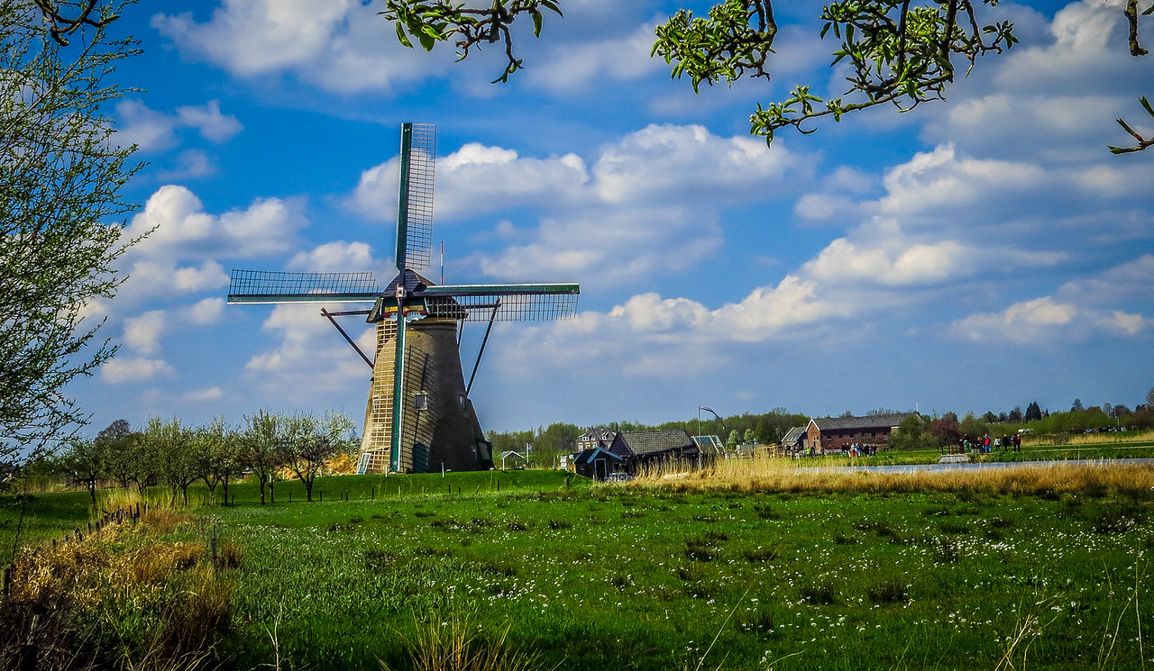 Windmills of Kinderdijk. Holland.