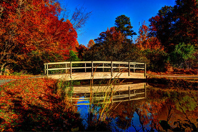 Symphony Lake, Cary, NC