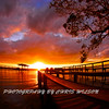 Melbourne Beach_01-16-12_0181