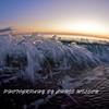 Melbourne Beach_01-02-12_0161