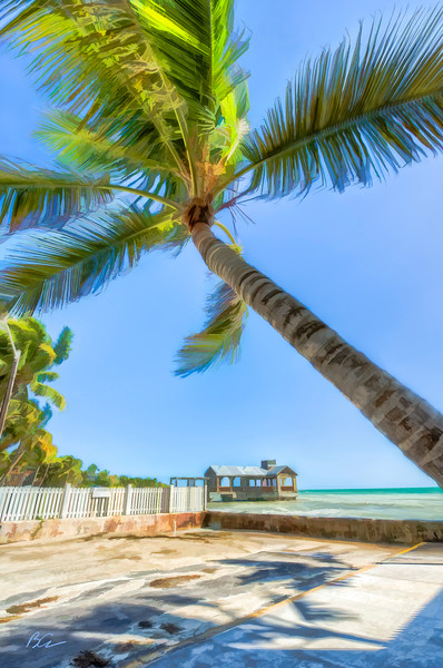 ~Vacation in my mind~<br /> <br /> Leeward Palms, warm tropical breeze, azur ocean; sandy beach and lots of sun.......All day, every day, any time it's in my mind.<br /> <br /> Key West, Florida