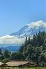 Mt. Rainier<br /> Puyallup, WA