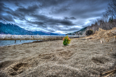 A 5 EV HDR taken at Sandy Beach on Douglas Island Alaska near Juneau Alaska with remnants of the Treadwell Gold Mine, a flower planted in the sand still stands.  Shot with a Nikon d700, edited in Photomatix & Lightroom.
