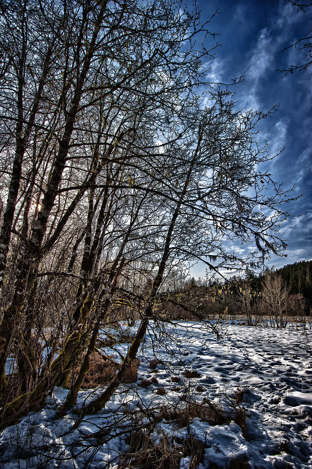 A 5 EV HDR photograph in early spring while walking the Brotherhood Bridge Trail in Juneau Alaska.  Taken with a Nikon d700, edited in HDR Efex Pro & Lightroom.