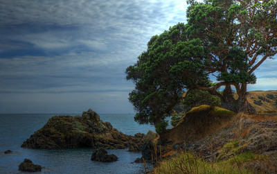 Landscape HDR - between Thames and Coromandel town - Coromandel, New Zealand
