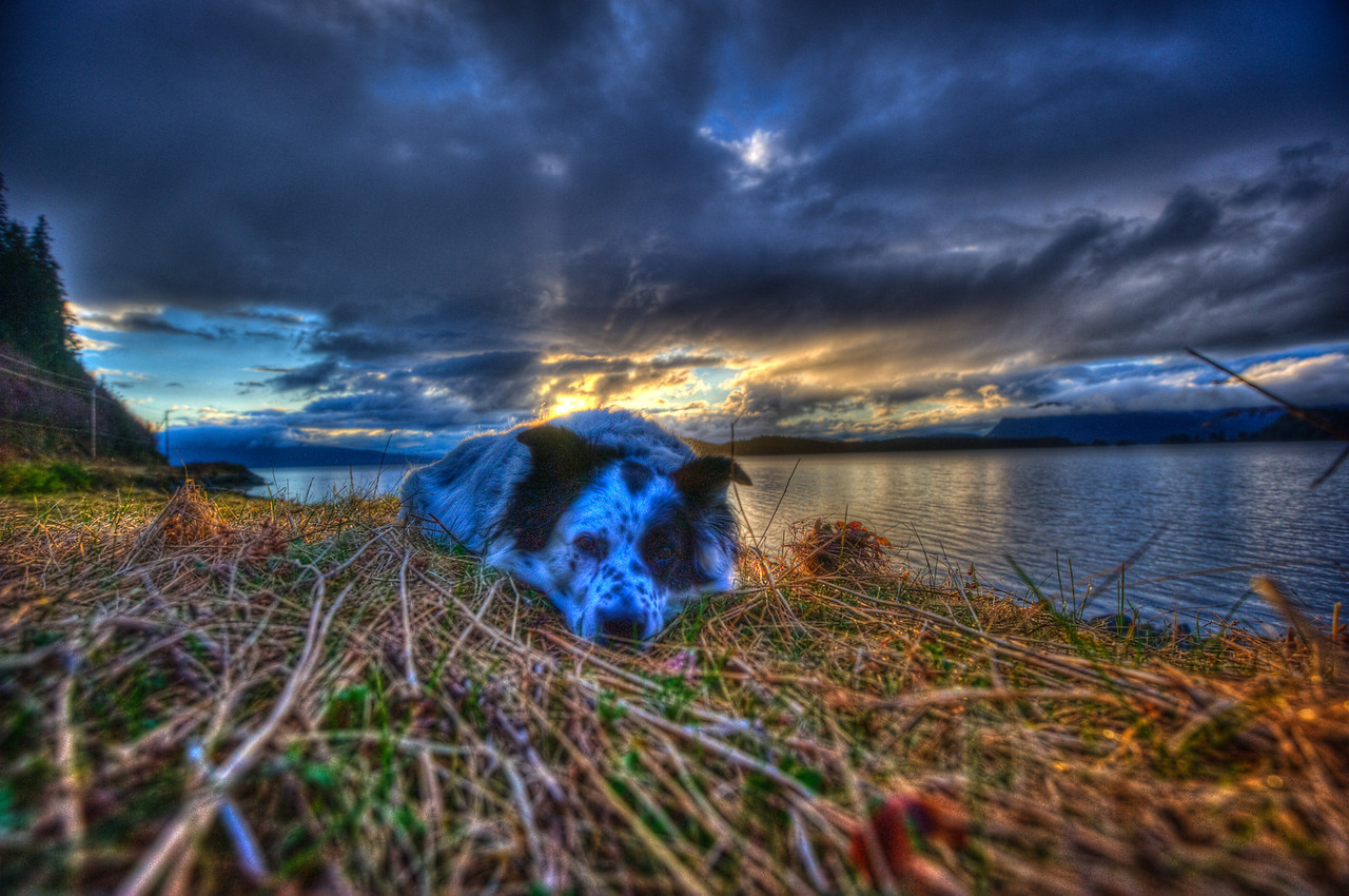 A 7 EV HDR photograph taken during a late spring sunset on the North side of Douglas Island Alaska with phenomenal clouds and my wonderful model Bondo who was great about staying still during the multiple exposure shots used for HDR photographs.  Taken with a Nikon d700, edited in Photomatix & Lightroom.