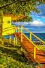 Hawaii 62