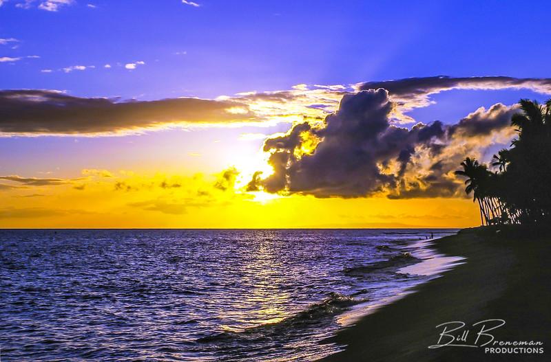 Hawaii 46