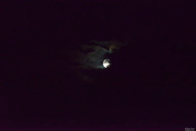 Beautiful large moon that just screamed Halloween to me and my daughter Jess. We separately noticed it while driving home, she from school play rehearsal, me from work.  The moon sat across our home. Looked larger in real life.