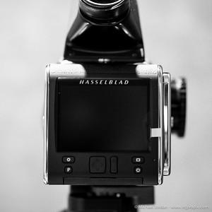 Hasselblad 50c