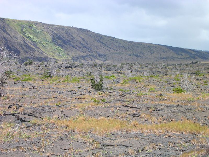 Going back up Chain of Craters toward Kilauea is a field of petroglyphs called Pu'u Loa.