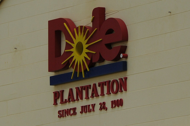 WE VISITED THE DOLE PLANTATION