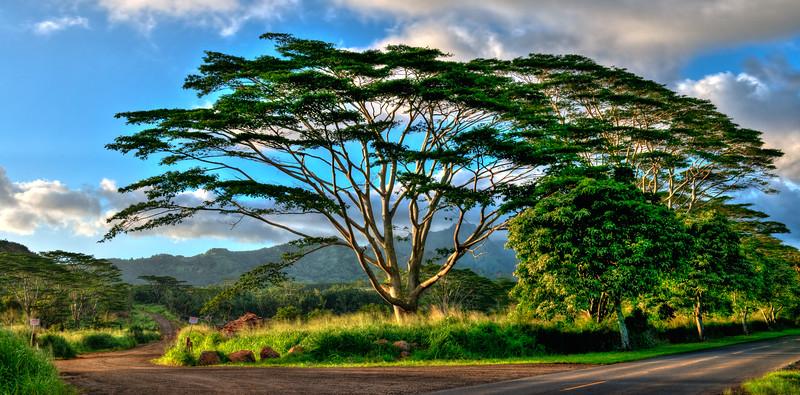 Kauai-2074-HDR-Edit