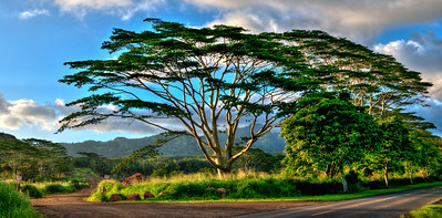 Kauai-2074-HDR-Edit