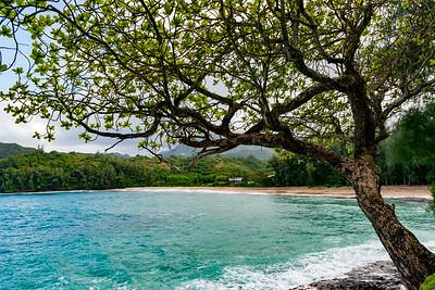 Kauai-2210