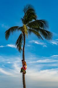 Kauai-2858