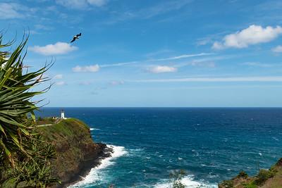 Kauai-4030