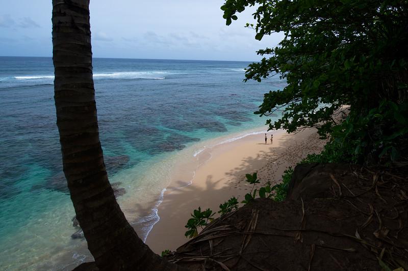 Kauai-1245