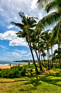 Kauai-30440