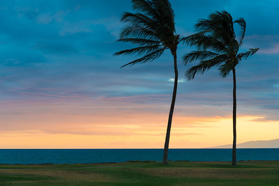 Maui pastels