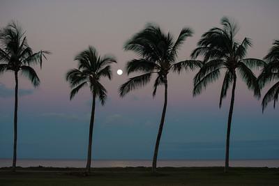 Maui moonset