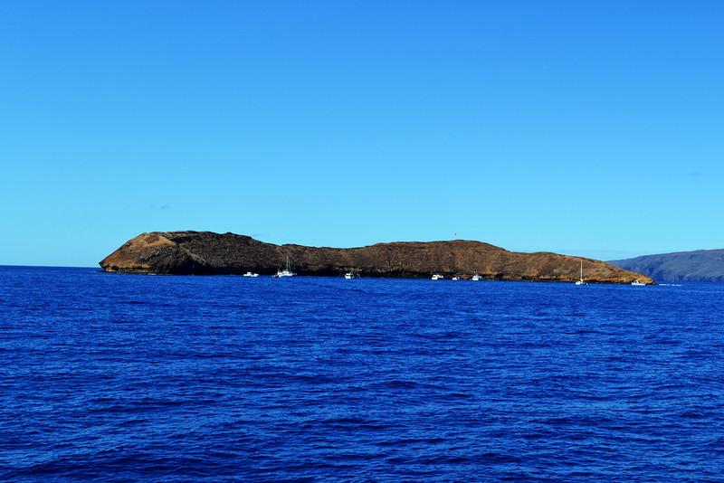 Molokini Snorkeling Trip near Maui Hawaii
