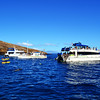 Snorkeling at Molokini Near Maui Hawaii 3