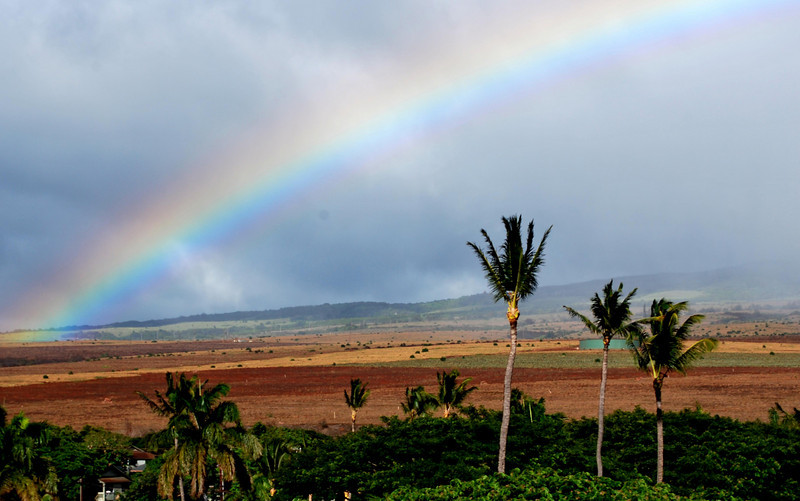 Catching a Rainbow in Maui