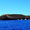 Molokini Snorkeling Trip near Maui Hawaii 2