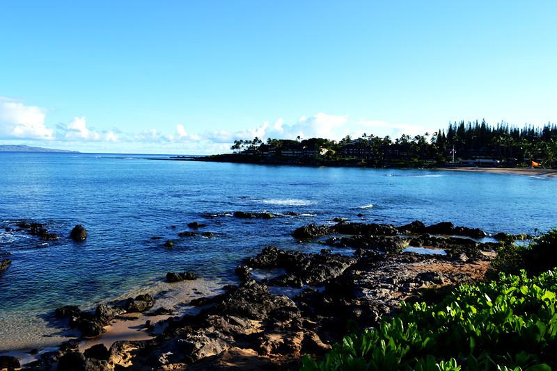 Volcanic Shoreline in Maui Hawaii 2