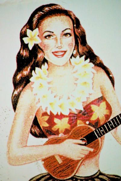Hawaii Christmas 12