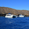 Snorkeling at Molokini Near Maui Hawaii 2