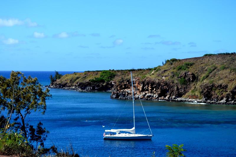 Kapalua Beach on the West Side of Maui in Hawaii 3