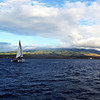 Early Evening Sail near Kaanapalli Beach in Maui
