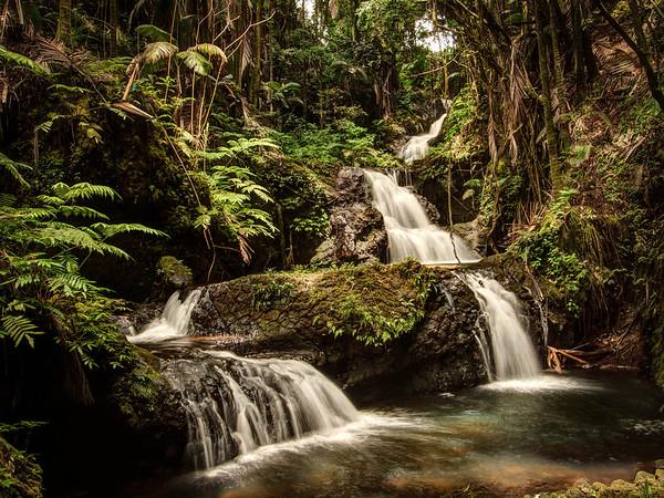 Onomea Falls - Hawaii Tropical Botanical Garden- Hilo - Big Island - Hawaii - September 2012