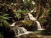 Onomea Falls - Hawaii Tropical Botanical Garden- Hilo - Big Island - Hawaii - September 2012