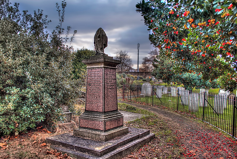 Brompton Cemetery berries