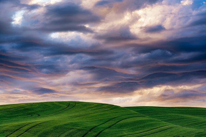 Palouse sky