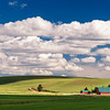 Pastoral Beauty