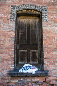 Newborn on the Doorstep