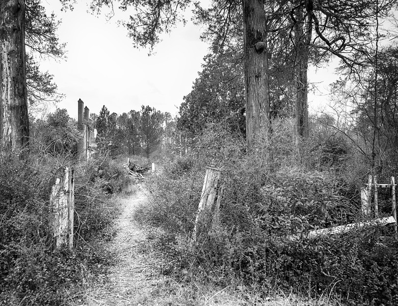 Casulon Plantation remains - New Hope, GA
