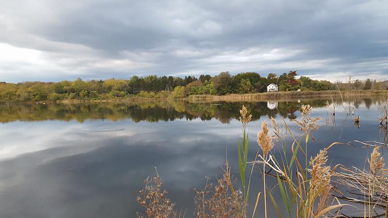 Owens Station Pond