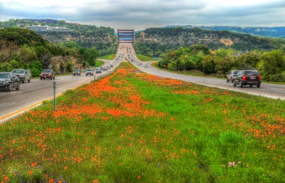 Images from folder 360 Bridge Wildflowers 4.1.15 HDRs
