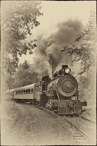 Battle on the Elbe train (Mount Rainier Scenic railroad) September 17, 2011.