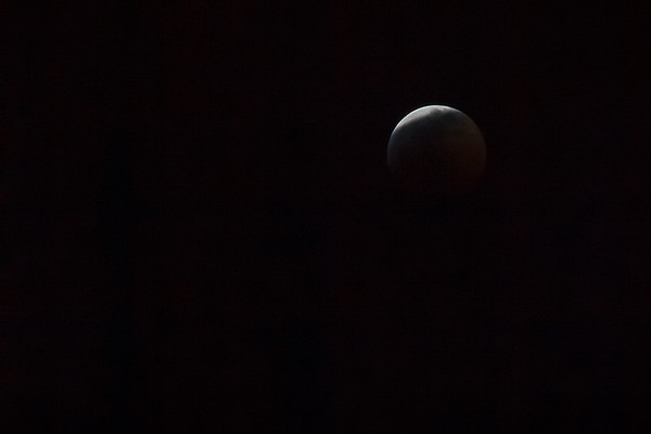 The eclipse portion of Super Blood Wolf Moon 2019 is well underway.  I almost did not step outside because the forecast suggested it would be overcast.