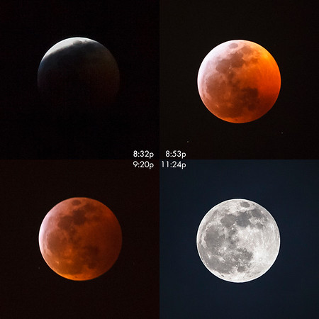 Four phases of Super Blood Wolf Moon 2019