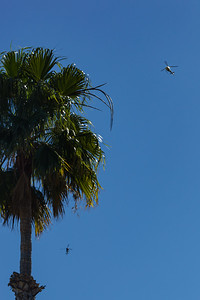 The constant droning of the choppers has continued into the afternoon