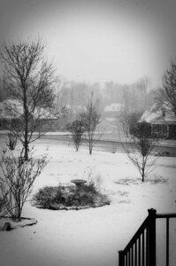 Snow.  This shot was converted to B&W with one of Pioneer Woman's actions.